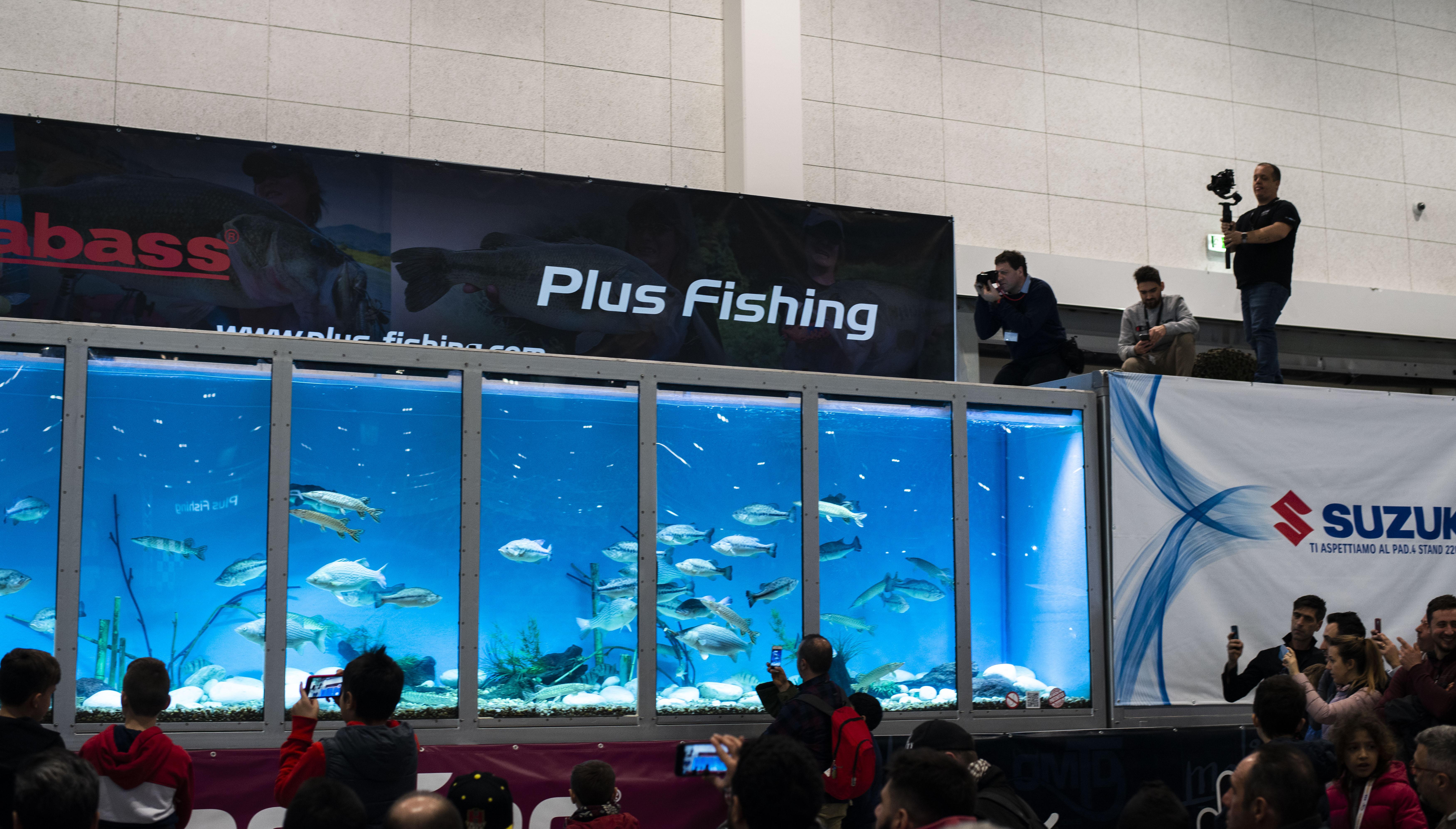 pescare show