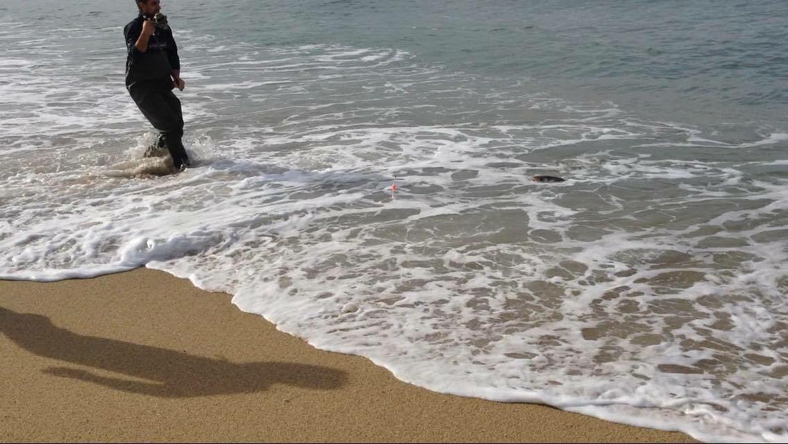 recupero pesce surf casting
