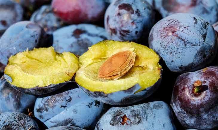 unknown-fruit
