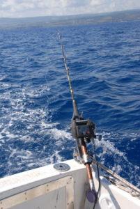 pesca ai totani, mulinello elettrico